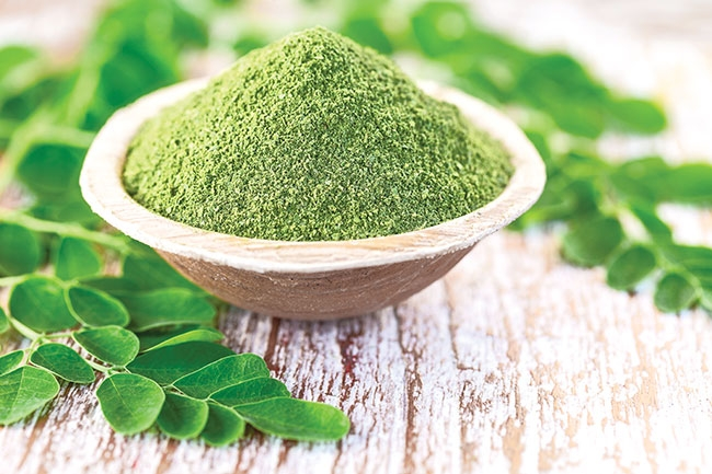 Moringa leaf powder offers higher protein content in tilapia fry: study -  Hatchery International