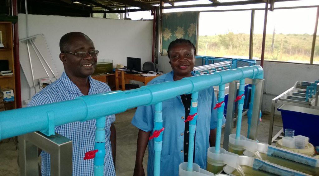 Two Ghanaian Fish Hatcheries - www hatcheryinternational com