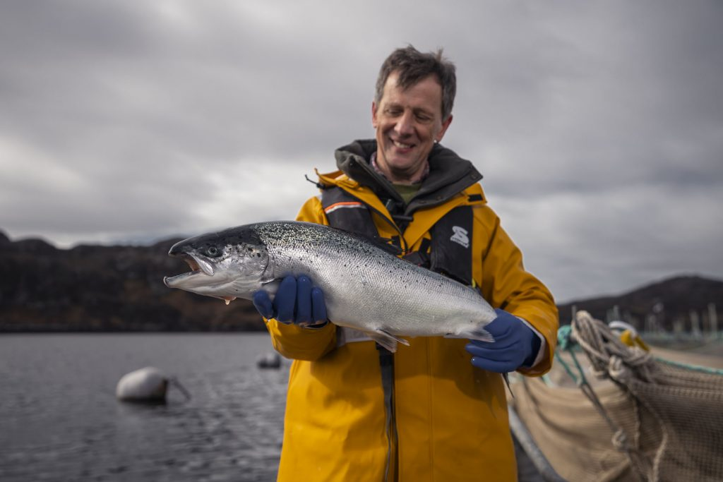 (Credit: Scottish Aquaculture Innovation Centre)